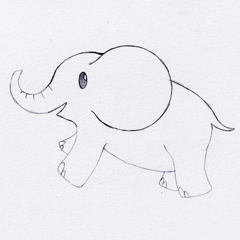 Step 7 - How To Draw An Elephant