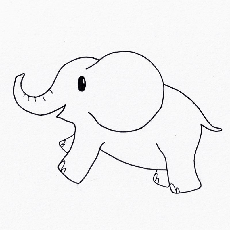 Step 8 - How To Draw An Elephant